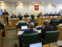 Parliamentary hearings in the Federation Council